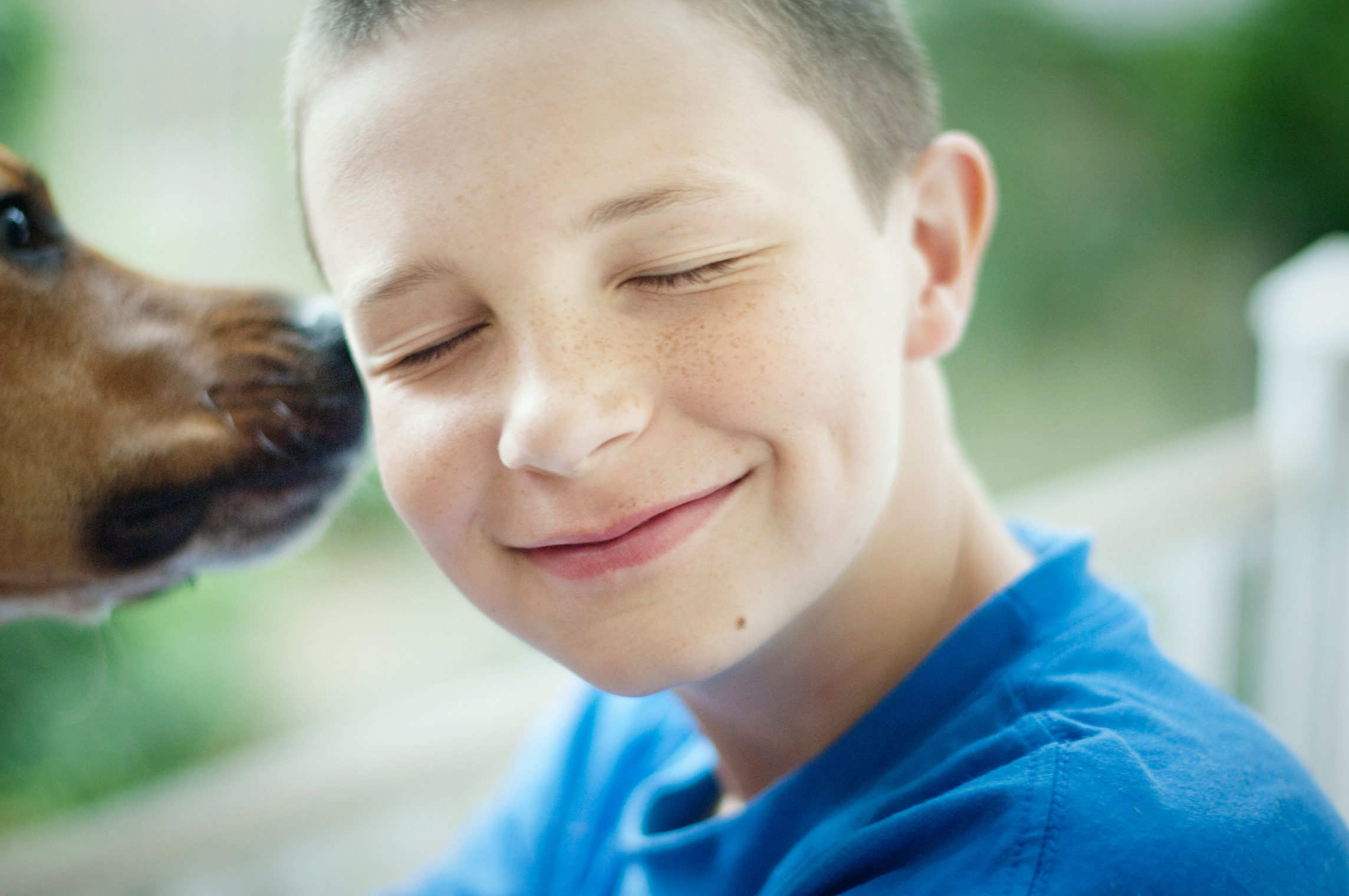 boy being licked on face by doggie